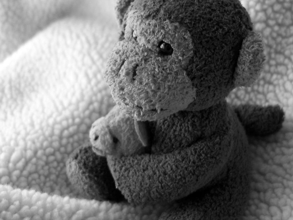 Μαϊμουδάκι κούκλα